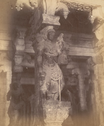 Close view of pillar with sculptured figure from the Pudu Mandapa, Minakshi Sundareshvara Temple, Madurai. 10032316